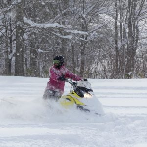 Snowmobile Cezar 2