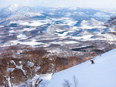Sidecountry  Hirafu