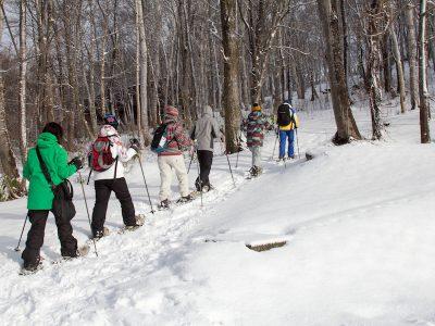 Snowshoeing 2