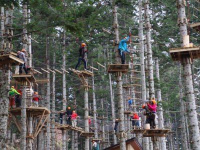 Nac Tree Climb