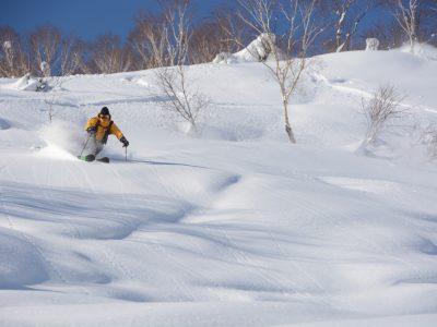 Hanazono Powder Guide 26062238451 O